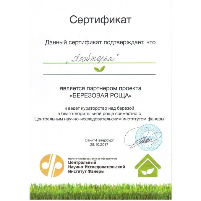 Plyterra Group has become a participant of the project «Birch grove»