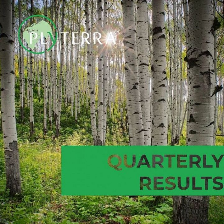 Quarterly results of Plyterra